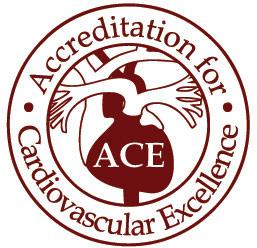 Ace-Accreditation-Saint-Joseph London.jpg